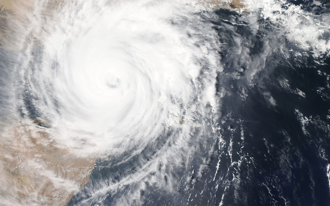 Seven ways to disaster-proof your life