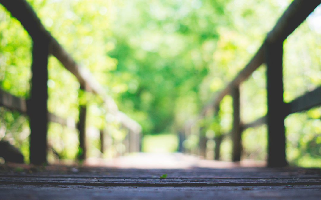 Case study: When can I retire?